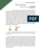 Memoria e Aprendizagem - Rodrigo Pavão