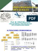 Alt[1]. Cromosomicas Estructurales g
