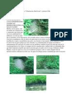 CANAL DE DESAGUE CAUSA ENFERMEDADES GASTRICASY RESPIRATORIAS POR LOS MALOS OLORES