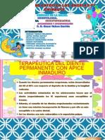 Apicogenesis y Apicoformacion - Expo