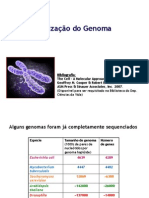 5.Organização do genoma