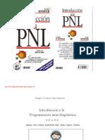54045962 Introduccion a La PNL