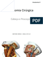 Anatomia II - Anatomia Cirúrgica Cabeça e Pescoço I