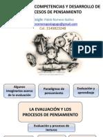 EVALUACION COMPETENCIAS Y DESARROLLO DEL PENSAMIENTO - PABLO ROMERO IBAÑEZ