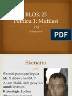 BLOK 25 Pemicu 1