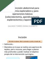 Tipos de incisión abdominal para laparatomía exploradora y