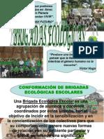 Conformación de Brigadas Ecológicas