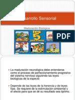 Cap 4-A Desarrollo Sensorial