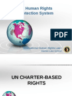 UN Human Rights Protection System