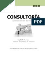 Apuntes_Consultoria_Verano_2013.pdf