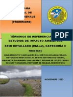TdR Ambiental CANAL N