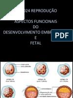 PLC0024 AULA 07 Desenvolvimento embrionário