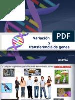 Variación genética y transferencia de genes TEMA 4