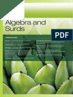 Ch2 Algebra and Surdskjtfc
