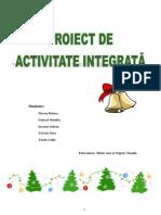 proiect_integrat_11_12_2012