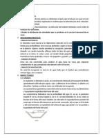 Informe de Hidraulica N1