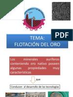 Flotacion Del Oro