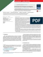 obturatorhernia.pdf