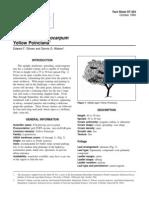 pelptea.pdf