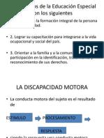 discapacidad motorica