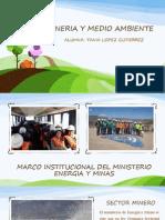 Marco Institucional de MineriaTANIA