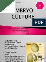 7. Kultur Embrio