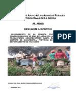 proy. avejas santa barbara ayacucho.pdf
