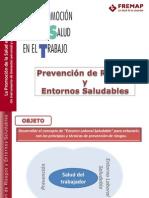 Prevencion de Riesgos y Entornos Saludables