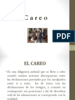 9.- Careo, inspección, diligencias especiales.