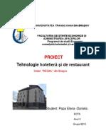 Proiect Thr PDF