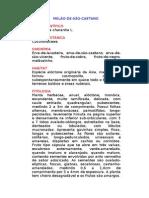 Melão-de-São-Caetano - Momordica charantia L. - Ervas Medicinais – Ficha Completa Ilustrada