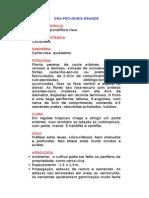 Ora-pro-nobis-grande - Peireskia grandiflora Haw. - Ervas Medicinais – Ficha Completa Ilustrada