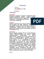 Pariparoba - Potomorphe umbellata (L.) Miq. - Ervas Medicinais – Ficha Completa Ilustrada