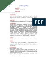 Vinagreira - Hibiscus sabdariffa L. Var. Edulis - Ervas Medicinais – Ficha Completa Ilustrada