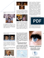 TERAPIA VISUAL.pdf