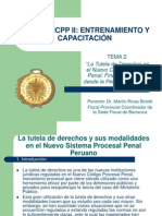 Tema 2 -La Tutela de Derechos en El NCPP