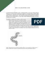 0022_Flexibilidad_Polimeros_y_Vulcanizacion.pdf
