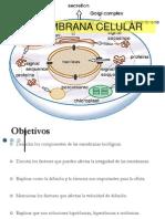 8. Membrana Celular
