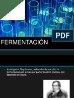 FERMENTACIÓN