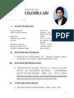 A Curriculum Felix Chambi 3 Sept 2012 (2)
