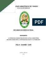 Monografia Diplomado Penal
