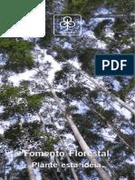 FomentoFlorestal - CENIBRA