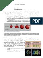 [06b] - [a] Citologia - Acquaporine; Struttura e Funzione Mitocondri 11-03-13