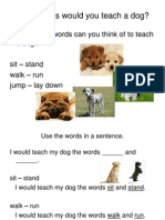 what words would you teach a dog