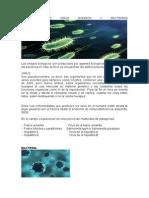 Definicion de Virus Hongos y Bacterias (1)