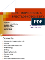 Electrophoresis & Spectrophotometry