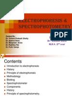 Electrophoresis & Spectrophotometry