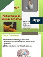 Blok 5 - IT 19 & 20 - Embrio Umum 2 - IsS