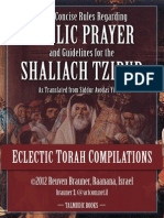 Laws of Shaliach Tzibur
