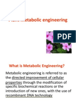 Plant Metabolic Engineering Ppt